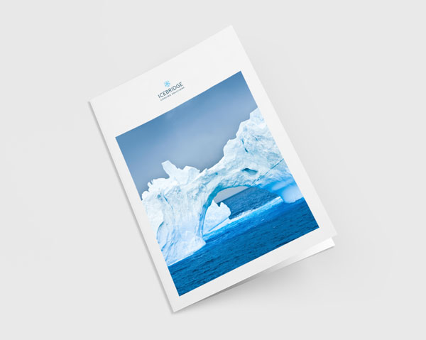 Portfolio – Icebridge
